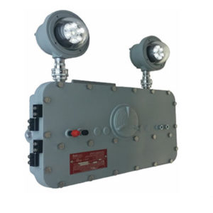"<a href=""http://www.demo.lifesafetylighting.com/wp-content/uploads/2019/01/XPEL.pdf"">XPEL: Download Spec Sheet</a>"